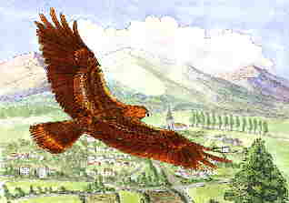 31. Eagle in flight
